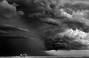 Mitch Dobrowner, Trees-Clouds